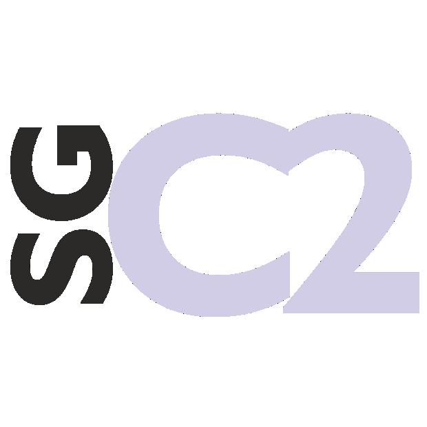 SuperGrundbog C2